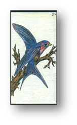 L'Oiseau carte 27 Oracle Gé